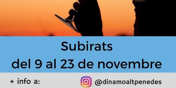 CURS D'INTRODUCCIÓ AL TAST DE VINS A SUBIRATS (suspès)