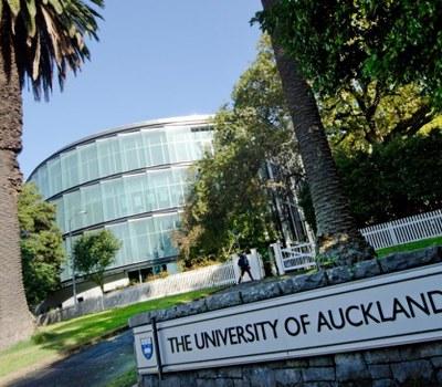 Beques de la Universitat d'Auckland per a estudiants internacionals