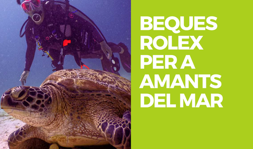 BEQUES ROLEX