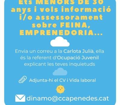 Vols informació i/o assessorament, sobre feina, emprenedoria...