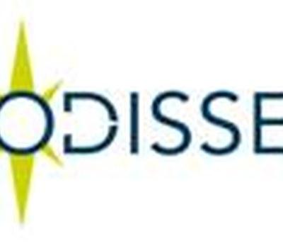 Pràcticum Odisseu: Ofertes de pràctiques remunerades