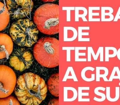 TREBALL DE TEMPORADA A GRANGES DE SUÏSSA